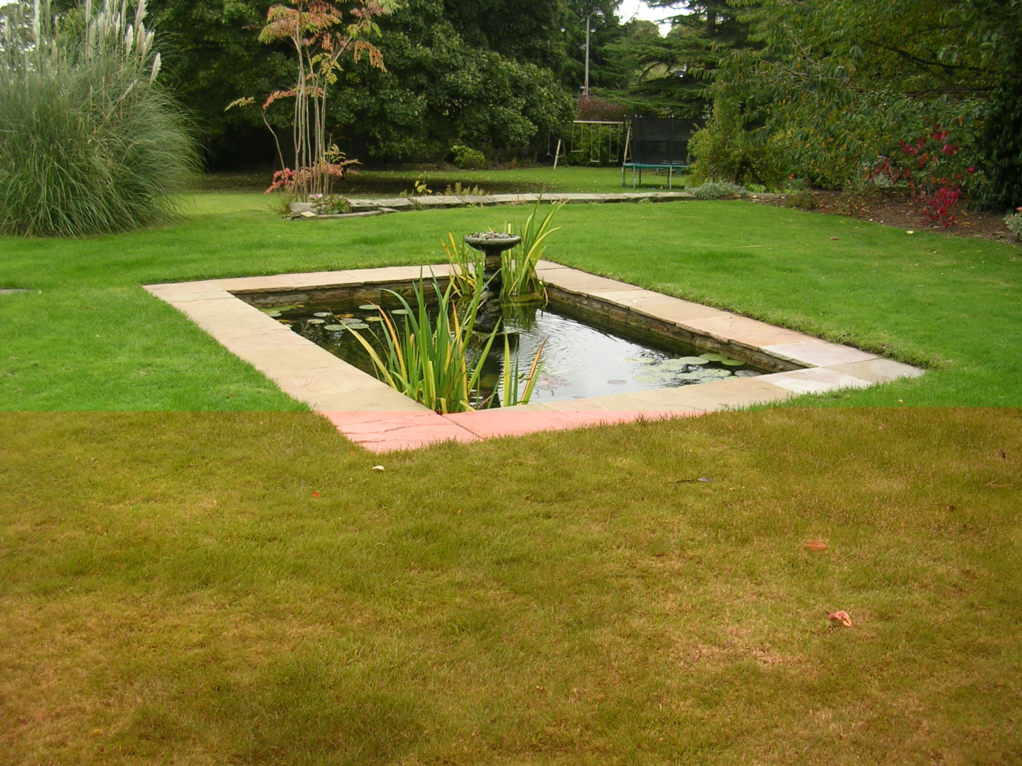 Aquatic Design Water Feature Ponds Streams Fountains Fish Pond