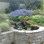 Natural stone pond with planting